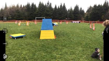 Agility World A-Frame
