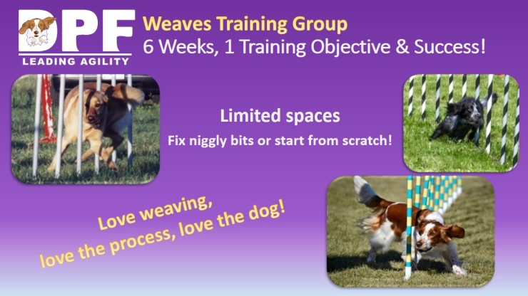 weaves website ad